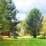Хотите купить земельный участок в деревне Зинаевка (Наро-Фоминский район)? Звоните по телефону 8 (800) 444-64-58 | Агентство недвижимости Территория