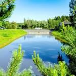 Хотите купить земельный участок в КП Green Park (д. Бекетово, Ступинский район)? Звоните по телефону 8 (800) 444-64-58 | Агентство недвижимости Территория. Фото 9