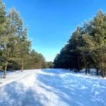 Хотите купить земельный участок в КП Green Park (д. Бекетово, Ступинский район)? Звоните по телефону 8 (800) 444-64-58 | Агентство недвижимости Территория. Фото 21
