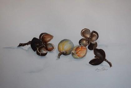 Hockey Nut - the hidden colours