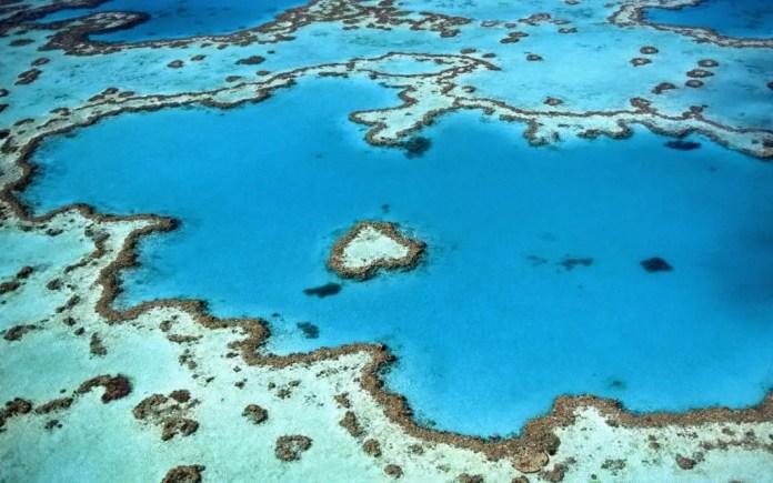 Heart Reef - Great Barrier Reef