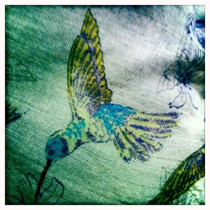 Hummingbird scarf
