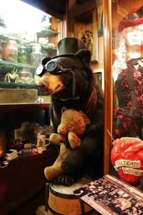 Trundle Bear