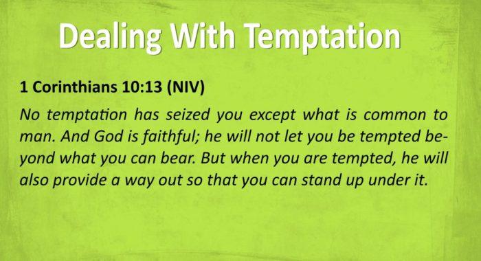 BVD - Temptation