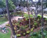 This courtyard at the Honolulu Airport is a relaxing way to spend layover time...