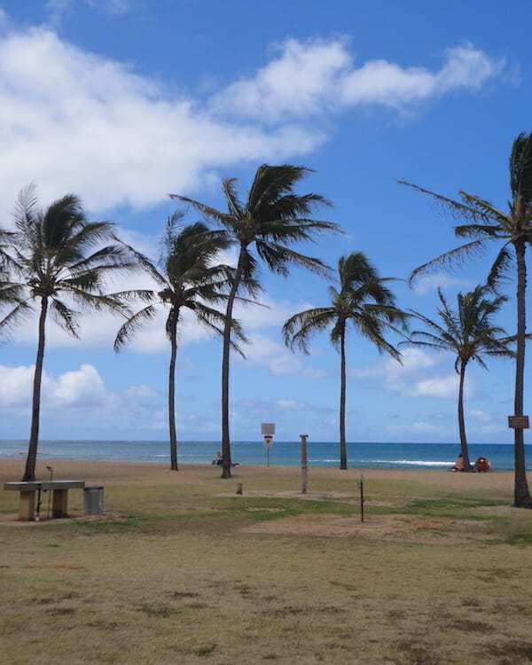 Friday Fotos — respite for Hawaii from rain