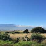 Friday Fotos — Big Island along the Mamalaloa Highway