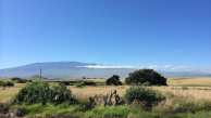 Along the Mamalaloa Highway looking toward Mauna Kea