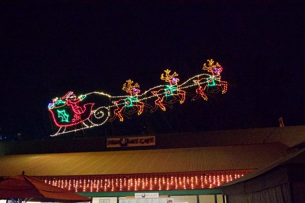 Santa arrives at Jungle Bells - San Diego Zoo - DSC_2352.jpg