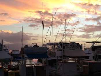 Lahaina Sunset at the harbor