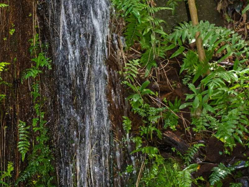 Waterfall onthe grounds at Byodo-In Temple