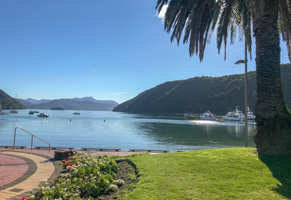 Picton's bay under blue skies