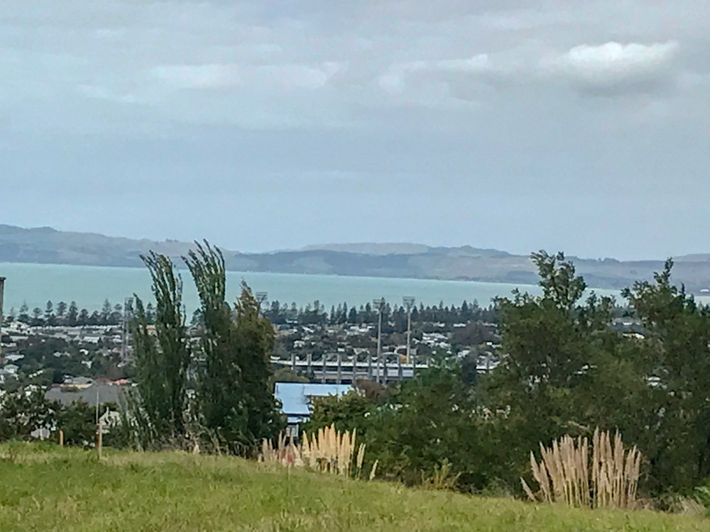 Town of Napier on the bay