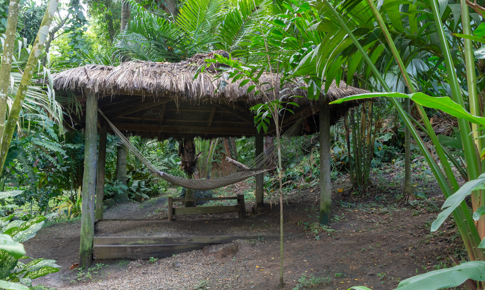 A nap is calling from this hammock