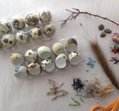 Quail Egg Ornaments