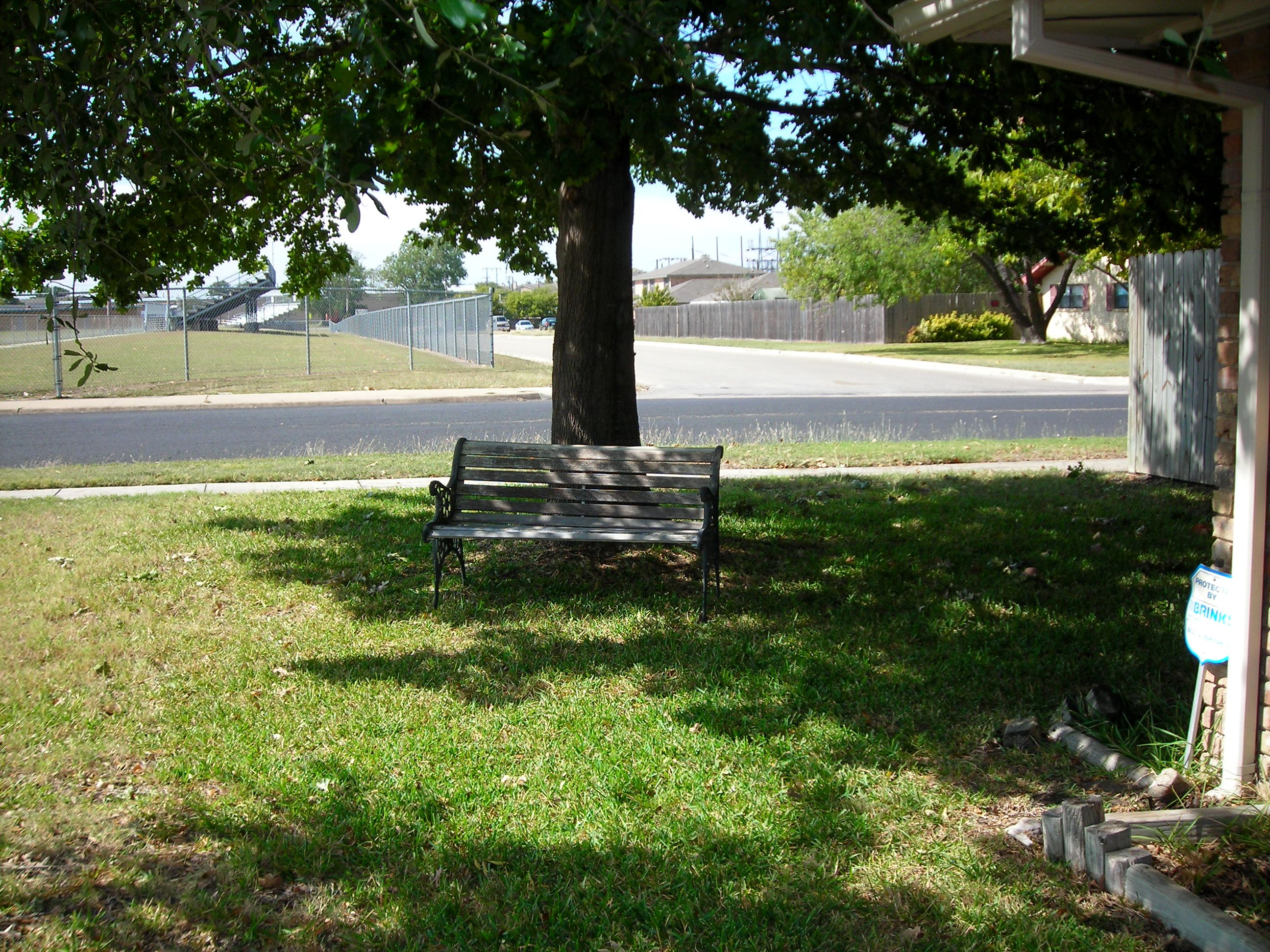 moved the old bench (formerly housed on the front porch) to the side yard, under a tree.