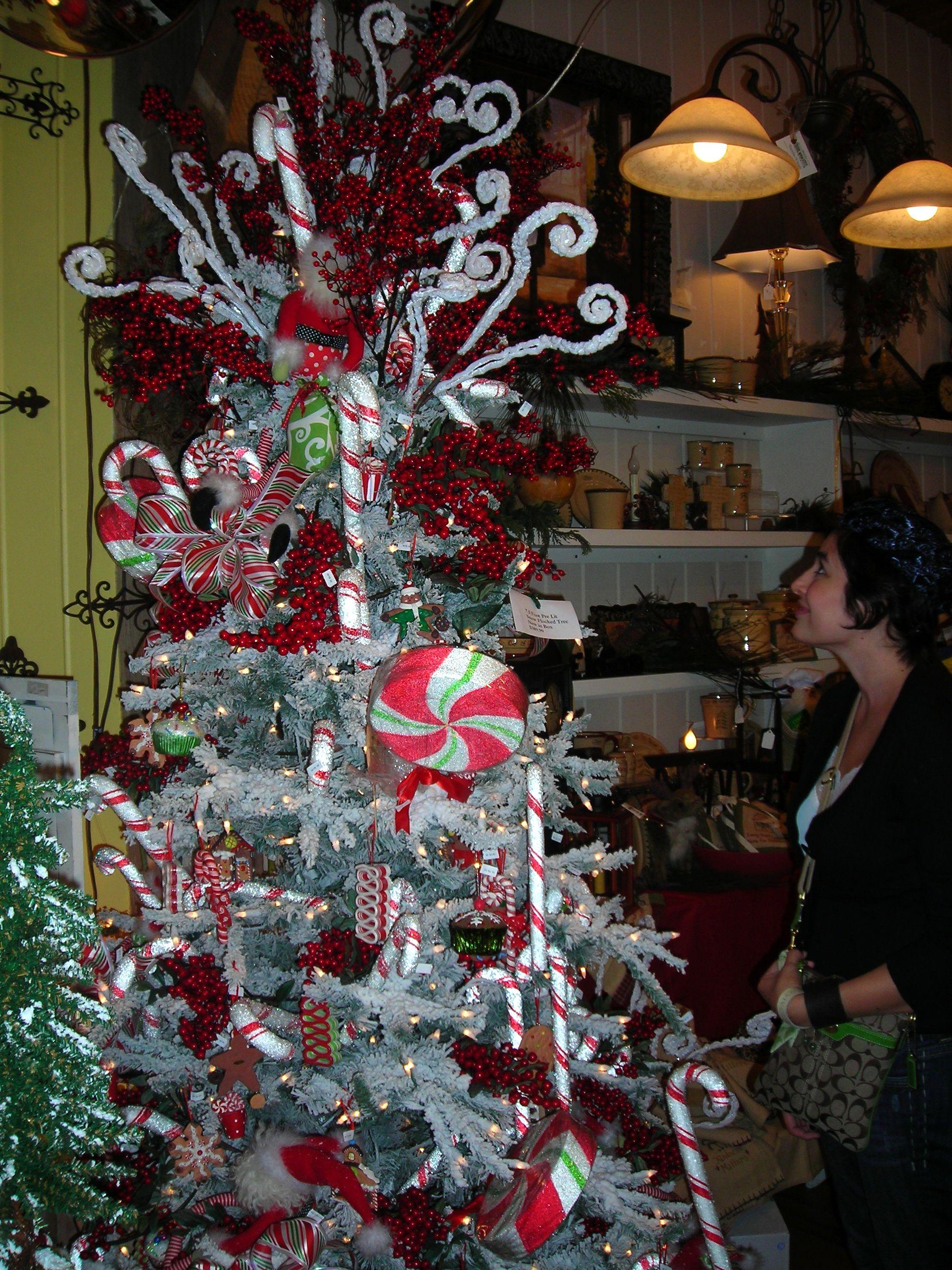 burgandi admiring an adorable christmas tree in a salado shop