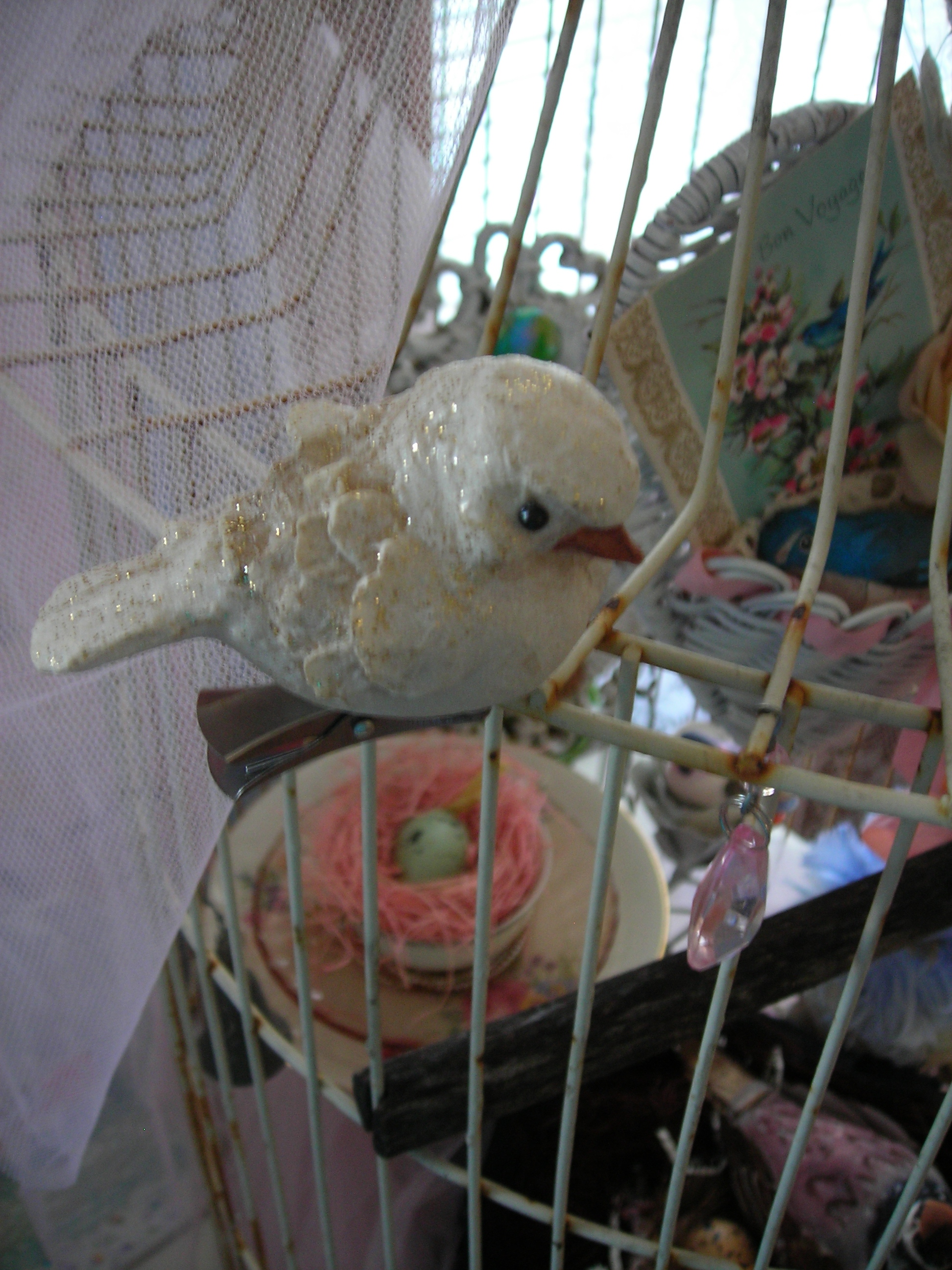 this is my new baby bird from salado. fell in LOVE with him! too precious!!