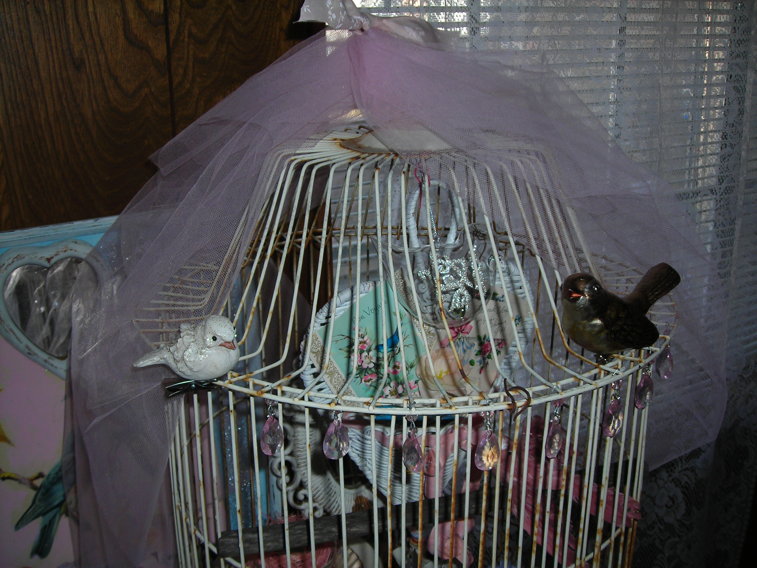 bird cage with my two new birds from salado
