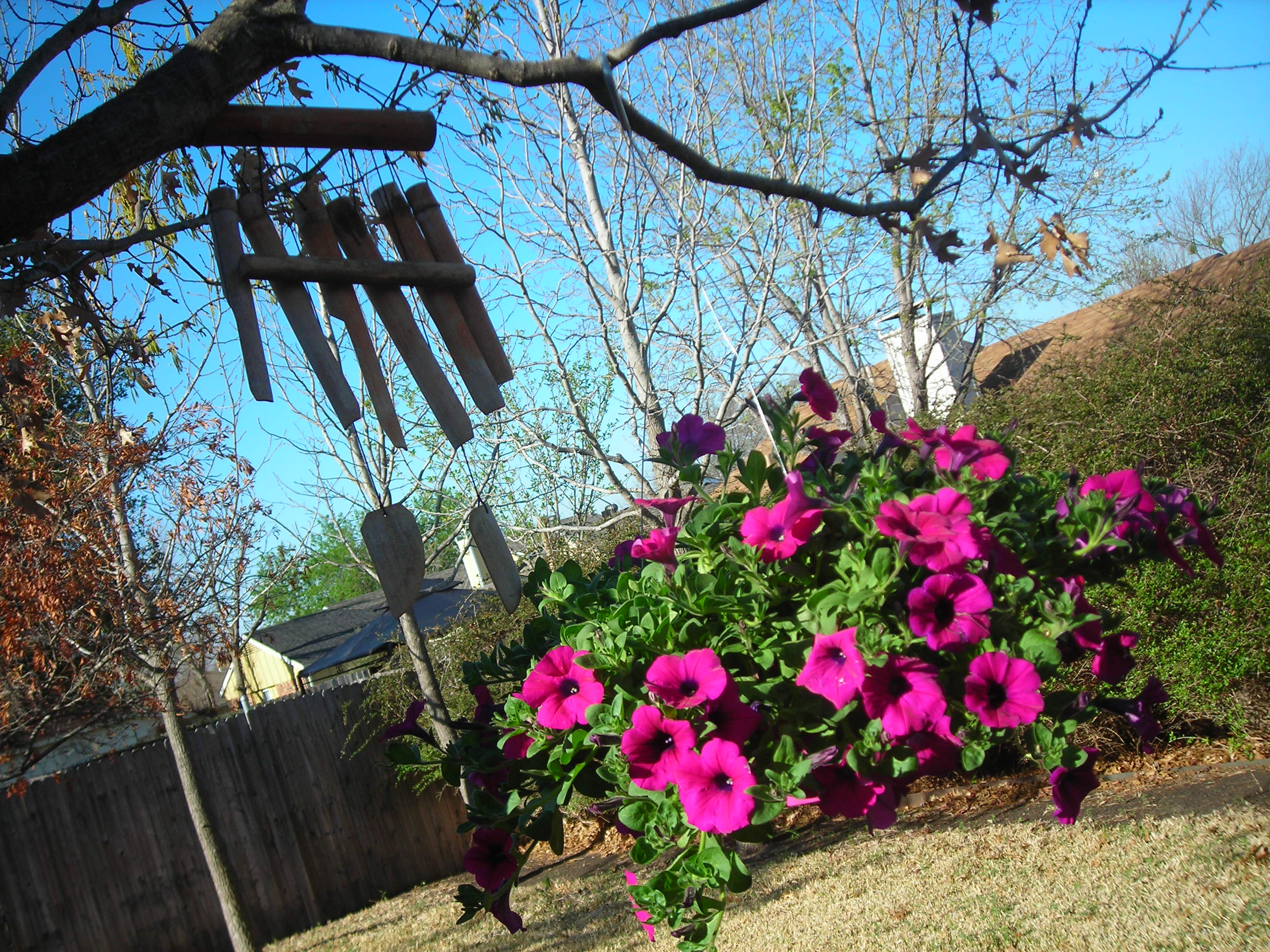 your moment of zen ... loved these wooden windchimes and flowers in my sister's backyard!