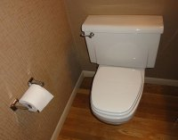 flush problems on american standard wall hung toilet with