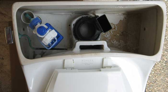 Kohler K3386 Rialto OnePiece Toilet comments and pictures  Terry Love Plumbing  Remodel DIY