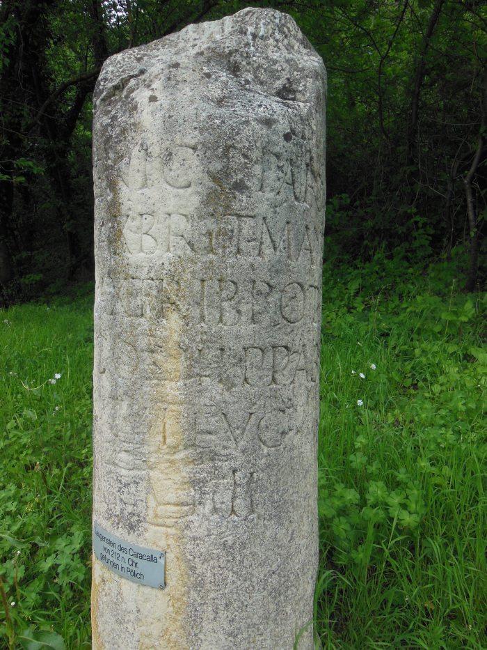 DSCN4615
