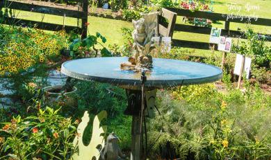 fairy fountain 900 002