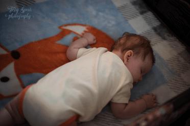 baby on fox blanket 900 002