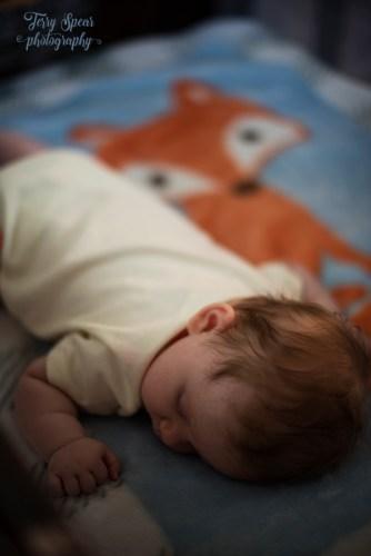 baby on fox blanket 900 004