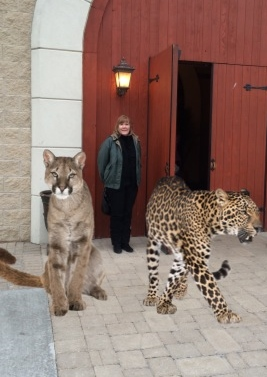 me, castle, big cats