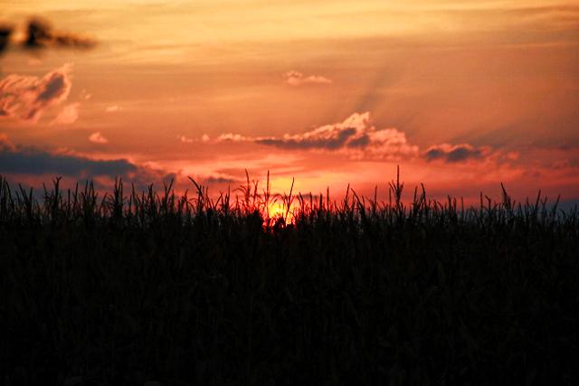 sunrise and clouds (2) (640x427)