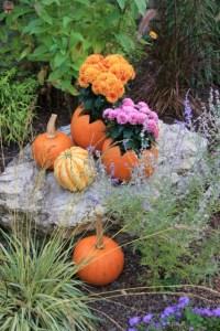 pumpkin flower planter (427x640)