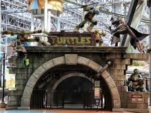 Turtles (640x482)
