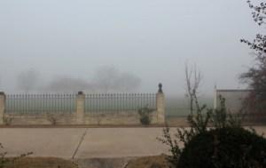 Fog in Dec (640x427)