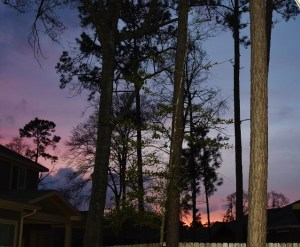 sunset (3) (640x526)