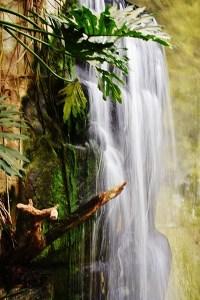 waterfall (427x640)