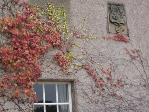 fall-vines-and-plaque-640x480