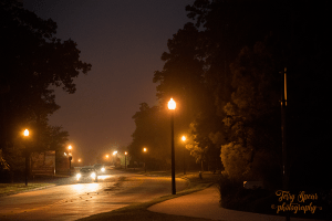 early-morning-lights-1000iso-900-006