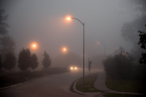 early-morning-fog-900-lights-still-on-012