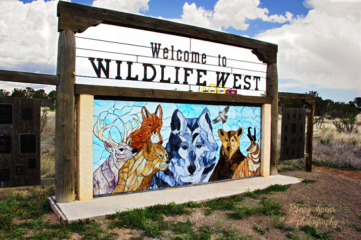 wildlife-west-zoo-stained-glass-sign-899