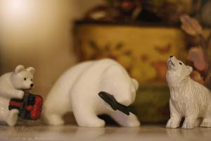 polar-bear-gifts-900-015
