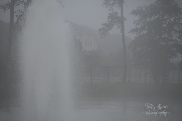 fog and fountain thick 900 048