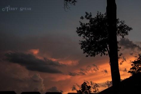 sunset 900 021