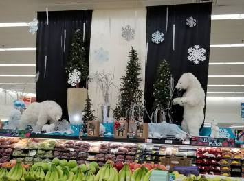 polar bears at store