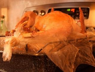 turkey (1024x773)