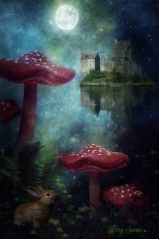 fairy mushroom castle and bunny red darker blurred castle 1000 2017