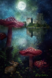 fairy mushroom castle and bunny red darker blurred castle more water hills with moon reflection 1000 2017
