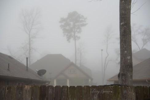 heavy fog 1000 013