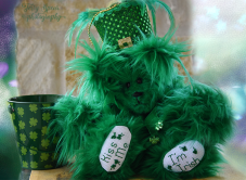 St Patrick's Day Bear different background 900